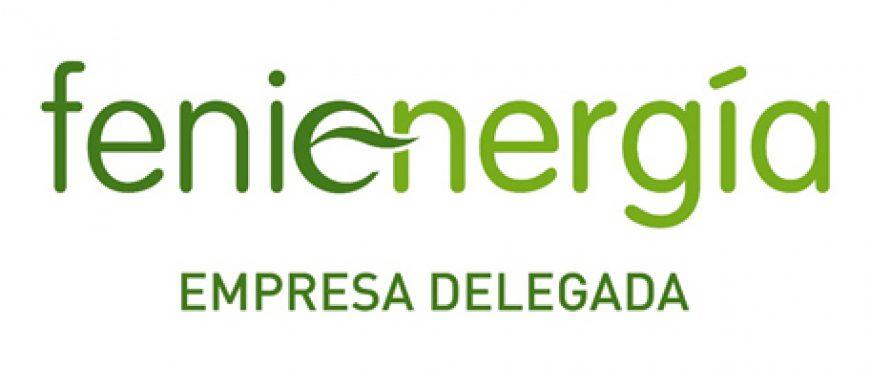 Fenie Energía empresa delegada